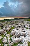 Twistleton Narbe Kalkstein Pflaster, Ingleton, Yorkshire Dales, Yorkshire, England, Vereinigtes Königreich, Europa