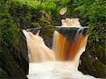 Ingleton, chutes d'eau, rivière Twiss, Ingleton, Yorkshire Dales, Yorkshire, Angleterre, Royaume-Uni, Europe
