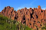 Red rock formations in the Canon Del Inca, Tupiza Chichas Range, Andes, Southwestern Bolivia, South America