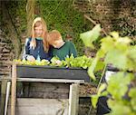 Children examining seedlings in bucket