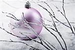 Boule de Noël et les branches argent