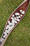Pétales blanc flottant sur l'eau en forme de coupes en feuille de palmier