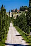 Lilliano, Chianti, Tuscany, Italy