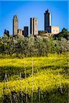 San Gimignano, Provinz Siena, Toskana, Italien
