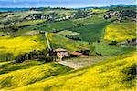 Farmhouse and Vineyard, Montalcino, Val d'Orcia, Province of Siena, Tuscany, Italy