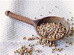 Buckwheat on a wooden spoon