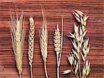 Des épis de blé sur une surface en bois
