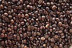 Grains de café (full-frame)