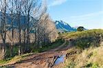 Un chemin carrossable disparaît dans la région montagneuse de la petite ville Overberg de Greyton, Western Cape, Afrique du Sud