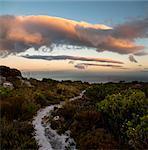 Weiße Pfad auf Berggipfel, St James Peak, Silberbergwerk, Table-Mountain-Nationalpark, Kapstadt, Western Cape, Südafrika
