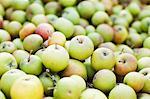 Full-Frame-Bild von grünen Äpfeln