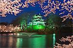 Yozakura, château de Takada, préfecture de Niigata, Japon