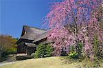 Sankeien Gardens, Yokohama City, Kanagawa Prefecture, Japan