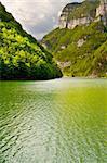 River Cesino in the Dolomites, Italy