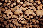 Human skulls and bones with soft shadows