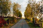 Route de campagne en automne, près de Villingen-Schwenningen, Bade-Wurtemberg, Allemagne