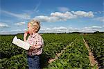 Boy eating strawberry in crop field