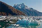 Berge und Gletschersee