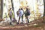 Familie Wandern durch Wald, Rückansicht