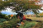 Lanceur de disque à l'automne au parc Vanier, à Vancouver, Colombie-Britannique