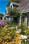Maison avec jardin de fleurs colorées, Provincetown, Cape Cod, Massachusetts, USA