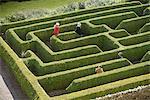 Students exploring hedge maze