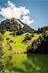 Colline herbeuse du lac encore rural