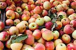 Berge von Äpfeln auf dem Bauernmarkt.