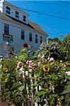 Garden, Provincetown, Cape Cod, Massachusetts, USA