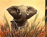 Portrait of Elephant in Grass
