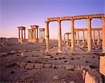 Columns in Desert Palmyra Ruins, Syria