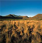 Karoo National Park Western Cape, South Africa