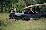 Touristes sur Safari, prendre des photos de guépards