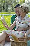 Mature couple having a picnic