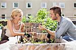 Heureux jeune couple jardinage au jardin urbain
