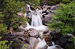 Waterfall in the woods, Yosemite National Park, UNESCO World Heritage Site, Yosemite, California, United States of America, North America