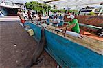 Lokalen Fischmarkt, Puerto Ayora, Santa Cruz Insel, Galapagos-Archipel, Ecuador, Südamerika