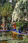 Das Bougainvillea Kaskadierung über eine dekorative Teich mit Seerosen im Garten Majorelle in Marrakesch, Marokko, Nordafrika, Afrika weiß