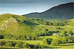 Matterdale häufig, in der Nähe von Dale Bottom, Lake District-Nationalpark, Cumbria, England, Vereinigtes Königreich, Europa