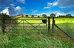 Vieille porte de fer, vallée d'Exe, Devon, Angleterre, Royaume-Uni, Europe