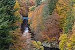 Pass of Killecrankie, Pitlochry, Perthshire, Scotland, United Kingdom, Europe