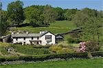 Castle Farm, Sawrey, the marital home of Beatrix Potter, famous author of children's stories, Lake District National Park, Cumbria, England, United Kingdom, Europe