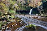 Sgwd Gwladus cascade entouré par le feuillage automnal, près de Ystradfellte, Parc National de Brecon Beacons, Powys, pays de Galles, Royaume-Uni, Europe