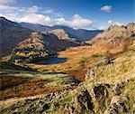 Blea Tarn et Langdale est tombé, le Parc National de Lake District, Cumbria, Angleterre, Royaume-Uni, Europe