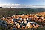 Marécage à l'automne, Parc National de Dartmoor, Devon, Angleterre, Royaume-Uni, Europe