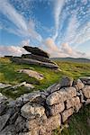 L'été à côté de la paroi de l'irlandais sur la crête de Belstone, Dartmoor, Devon, Angleterre, Royaume-Uni, Europe