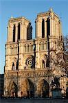 Notre-Dame de Paris cathedral, Paris, France, Europe