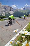 Cyclists, Sella Pass, Trento and Bolzano Provinces, Italian Dolomites, Italy, Europe