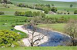 The River Wharfe at Burnsall, Wharfedale, Yorkshire Dales, Yorkshire, England, United Kingdom, Europe