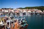 Trawler im Hafen, Scarborough, North Yorkshire, Yorkshire, England, Vereinigtes Königreich, Europa